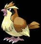 pokemon:016_poppo.png