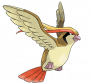 pokemon:018_pijotto.png