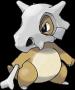 pokemon:104_karakara.png